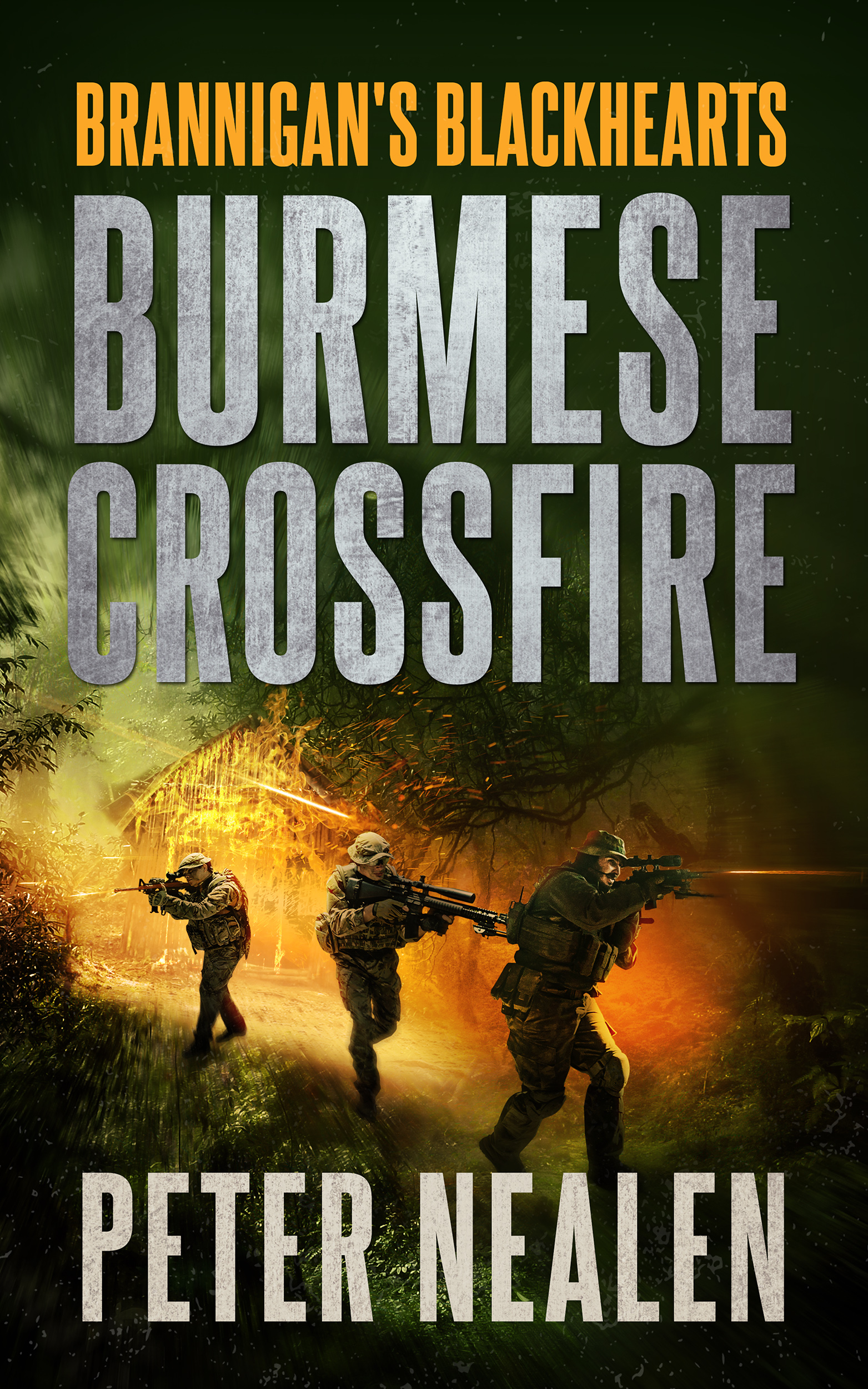 Burmese Crossfire by Peter Nealen